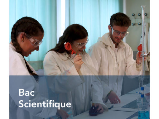 Bac Scientifique